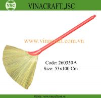 Vietnam grass broom with competitve price