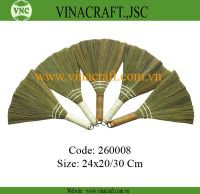 Small Vietnam grass broom