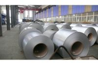304L Hot Rolled Stainless Steel Coil