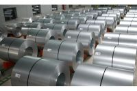 Hot Rolled Stainless Steel Coil 304L Factory Manufacture