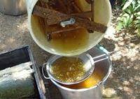 Pure Natural Honey & Bee Honey