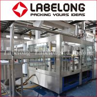 Small capacity 3000BPH Automatic drinking /mineral Water/spring water filling/bottling Machine