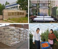high quality greenhouse film for agriculture