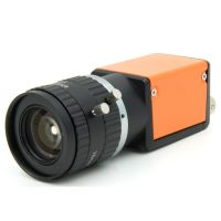 One Year Warranty Global Shutter C mount Golf GigE Vision High Speed Camera