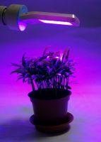 Panel LED Bulb