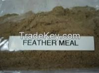 High Quality FEATHER MEAL