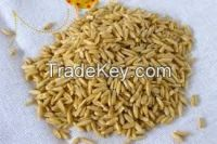 high  quality   Groats oat
