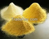 Hight quality Egg powder