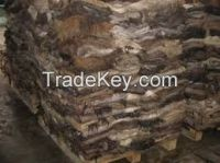WET SALTED BUFALO HIDES