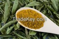High  quality  Curry leaves