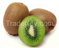 High  quality  fresh kiwi