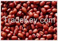 high  quality  Azuki Bean