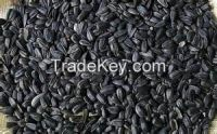 High quality  Sunflower seeds