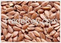 High quality  Lin Seed