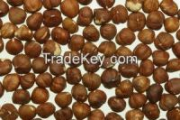 High  quality  Macadamia