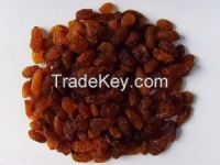 High  quality  red raisin