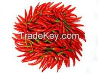 High  quality  yiduhong chili