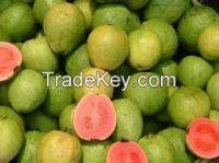 High  quality  Fresh Guava