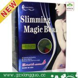 Magic Weight Loss Product - Slimming Magic Bean