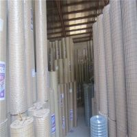 China Export Hot Dip Gal. Welded Iron Wire Mesh