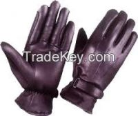 Dressing Gloves
