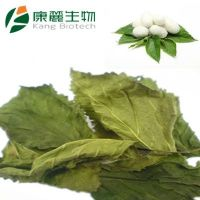 Natrual Mulberry leaf Extract (Powder)