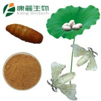 Male Silk Moth Extract (Sexual Supplement For Men)