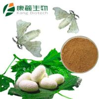 Silkworm Pupa Powder