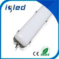 IP65 LED Tri-Proof Light for 1200mm 50W Indoor / Outdoor Application