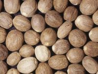 Top Quality Nutmeg