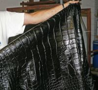 100% Pure Alligator Leather For Handbags And Notebook Cover Production
