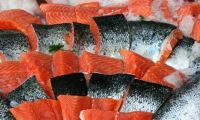 Fresh Norwegian Salmon Fish,Whole, Fillets ,smoked Slice,