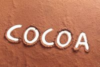 Natural Cocoa Powder With High Fat 20-22%