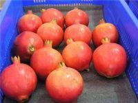 Grade 1 Pomegranate Fruits