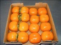 Fresh Sharon Fruits /Kaki Persimmon