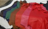 Top Quality Genuine Excotic Leather Skins And Hides