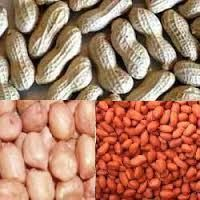 GROUND NUTS (Peanuts)