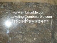 Fossil Brown Limestone