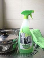 Stainless Steel Domestic Cleaning