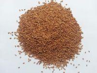 Premium Natural Yellow-White Sesame Seed---- Bangladesh Origin