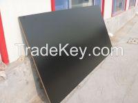1220mm*2440mm melamine mdf/melamine particle board