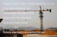 Self Climbing Tower Crane TC6010-6 150m