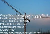 12 Ton TC7520-12 China Hammer Head Tower Crane For Power Stations 183m hight