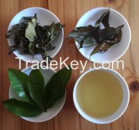 Agarwood Green Tea