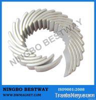 Permanent Arc Motor Magnet