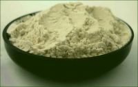 Buy rich quality guargum powder at affordable price