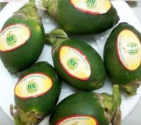 Fresh and frozen betel nut