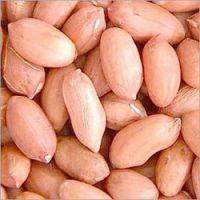 Raw Red skin Peanuts