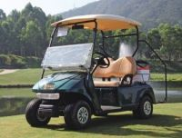 EVA  electrical cart