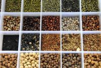 All types of Pulses; lentils, kidney beans, mung beans